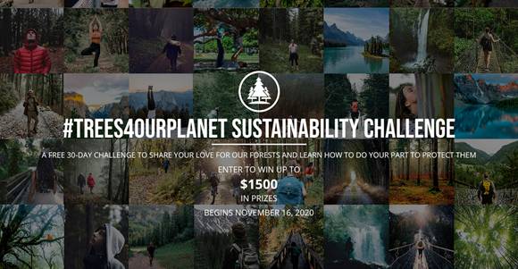 #TREES4OURPLANET SUSTAINABILITY CHALLENGE